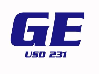 USD 231
